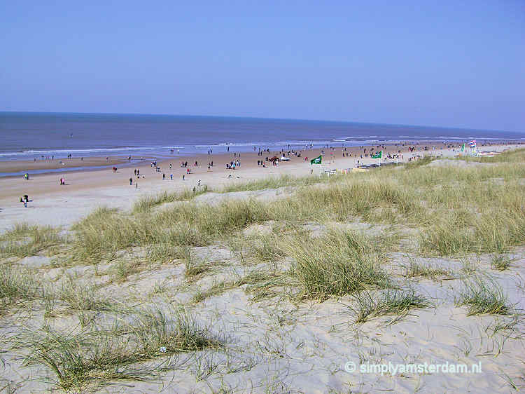 North Sea beach