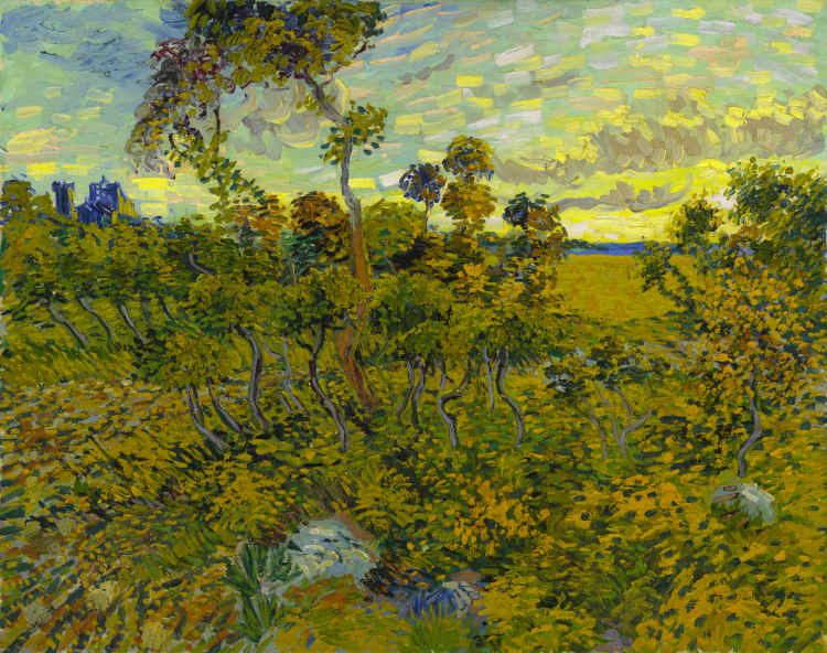 Van Gogh Museum recognizes new Van Gogh painting